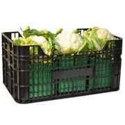 Caja de Fruta Plastica 60x40x29 cm