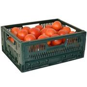 Caja de Plastico 30x40 Outlet Ref.S3225750