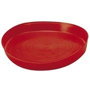 Plato de Plástico para Pollitos Primera Edad 40x5 cm