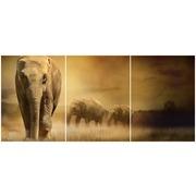 Cuadro Elefantes Multi 3 90x40cm Ref.110525972
