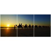 Cuadro Camellos Multi 3 90x40cm Ref.75232378