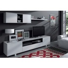 Conjunto Muebles de Salon TV