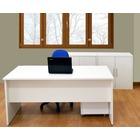 Despacho completo de Oficina Lumen P1