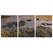 Cuadro Panorámico Agua de Madera 147x60cm