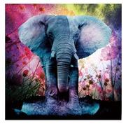 Cuadro Impreso de Elefante en Cristal 80 x 80 cm