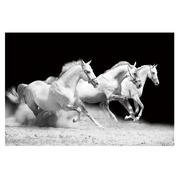 Cuadro Caballos Fotoimpresión en Cristal 120 x 80 cm