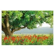 Cuadro Fotoimpresión Campo de Flores en Lienzo 120 x 80 cm