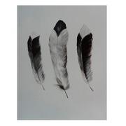 Cuadro Tres Plumas Pintado al Oleo 4 x 60 x 90 cm