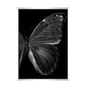 Cuadro Mariposa Impresión y Oleo 4 x 65 x 93 cm