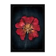 Cuadro Flor Roja Impreso en Papel 4 x 100 x 140 cm