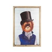 Cuadro Mono Vintage en Madera de Abeto 4 x 50 x 70 cm