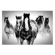 Cuadro Foto Impreso Caballos en Cristal 0,4 x 120 x 80 cm