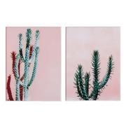 Cuadro Cactus Impreso en Cristal 3,5 x 60 x 80 cm