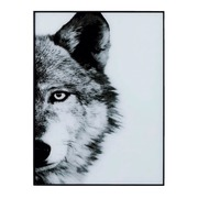 Cuadro Lobo Impreso en Cristal 3,5 x 60 x 80 cm