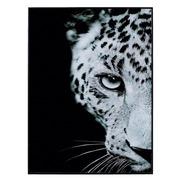 Cuadro Leopardo Impreso en Cristal 3,5 x 60 x 80 cm