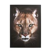 Cuadro Puma Impreso en Lienzo 4 x 100 x 140 cm