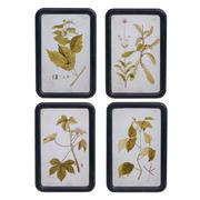Cuadro Impresión Hojas con Marco 1,8 x 30 x 45 cm